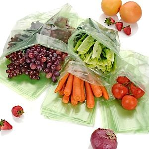 Debbie Meyer Green Bags, food saver bags