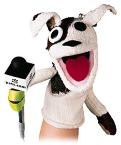 pets dot com sock puppet, dotcom boom and bust, money, silicon valley
